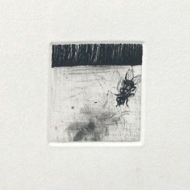 Por si las moscas 2/26