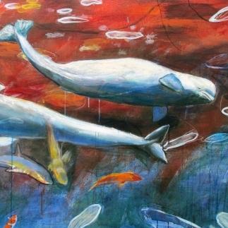 Familia de belugas