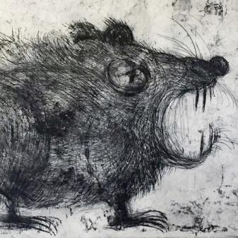 La rata inmunda