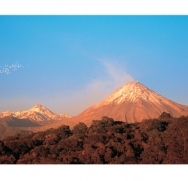 Volcanes con garzas. Precio según soporte y medidas