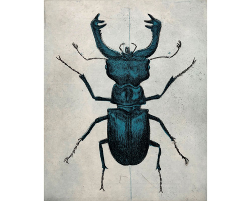 JOSÉ FORS Escarabajo
