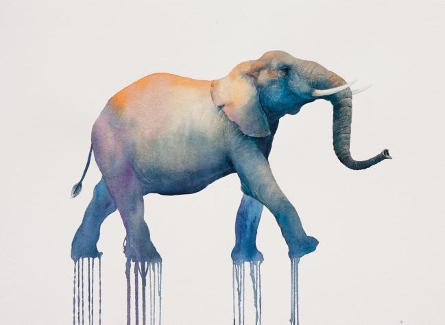Marcha del elefante - Oliver Flores