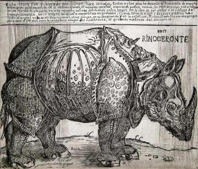 Rinoceronte a partir de Durer