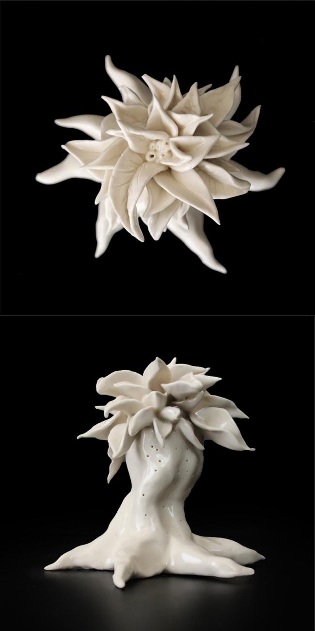 Archonto robus fam. Arecaceae - Alexia López Escultura
