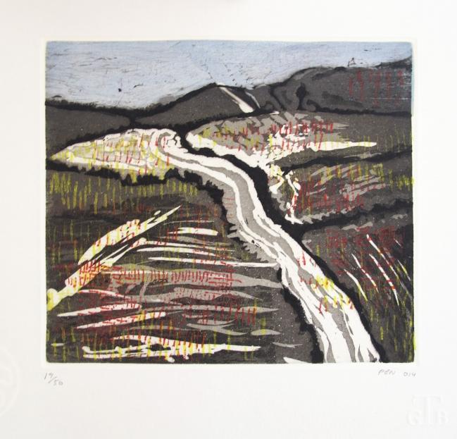 PHILIP NEVIN - S T 14/50  Incluye catalogo de artista - Varios Artistas En La Gráfica