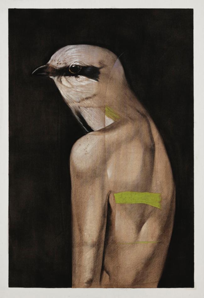 La pájara