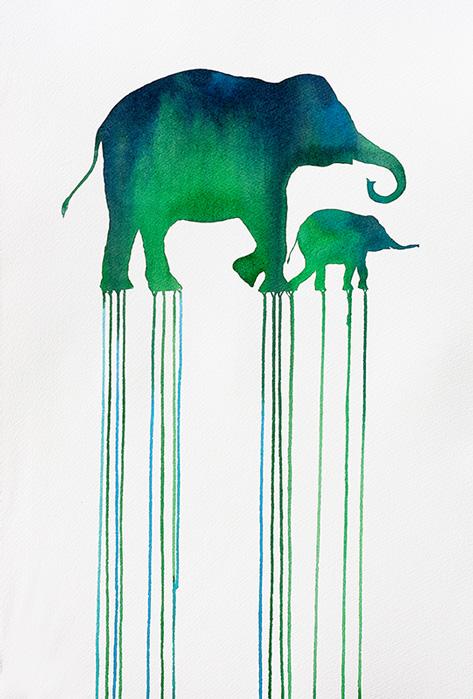 Elefante Asiático - Oliver Flores