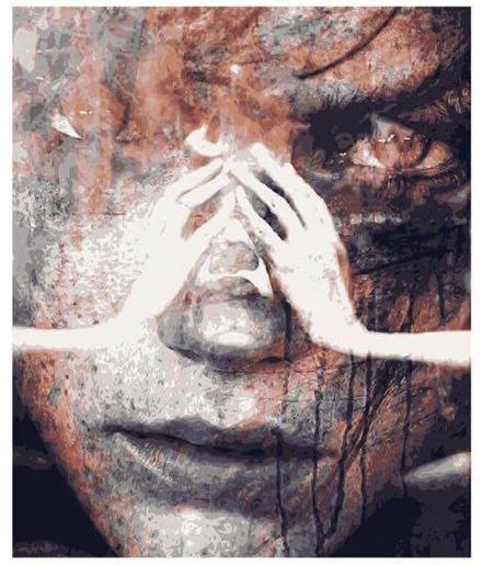 El camino a la plenitud - Susana Casillas