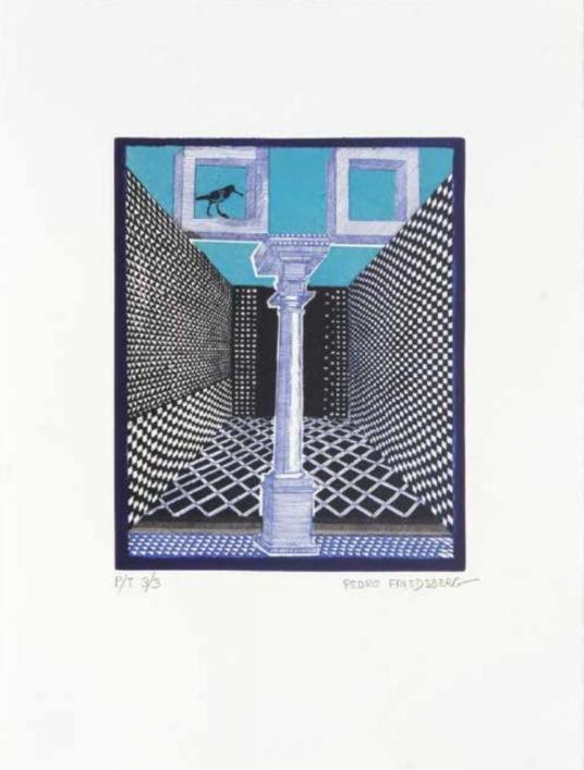 Pájaro 34/37 - Pedro Friedeberg