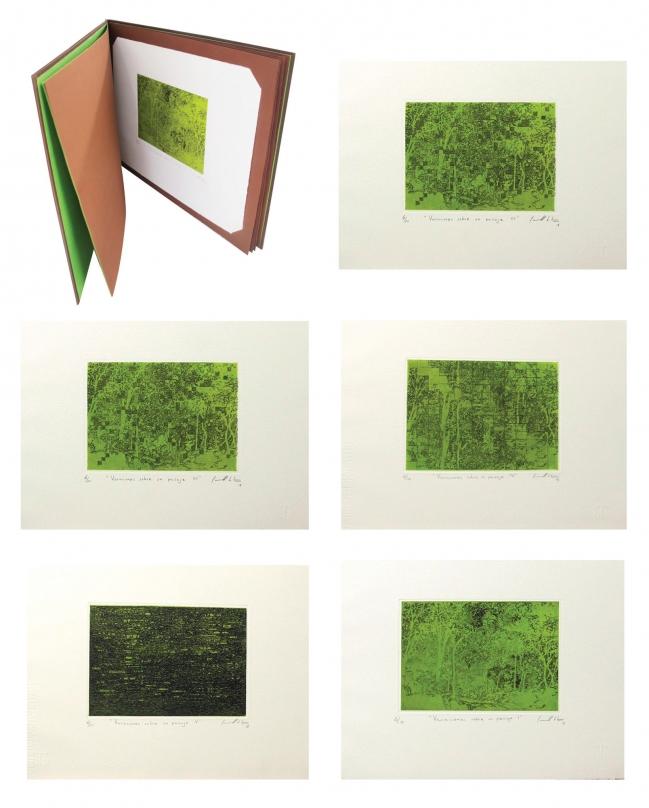 GABRIEL CARRILLO - Carpeta de obra gráfica