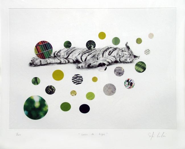 El sueño del tigre 1/20 - Sofía Echeverri
