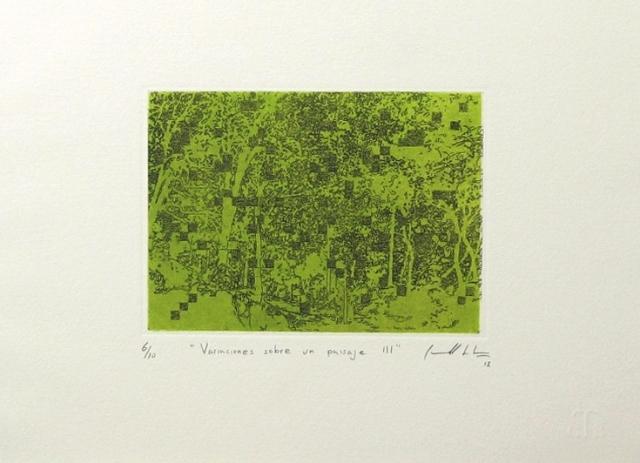 GABRIEL CARRILLO - Variaciones sobre un paisaje III