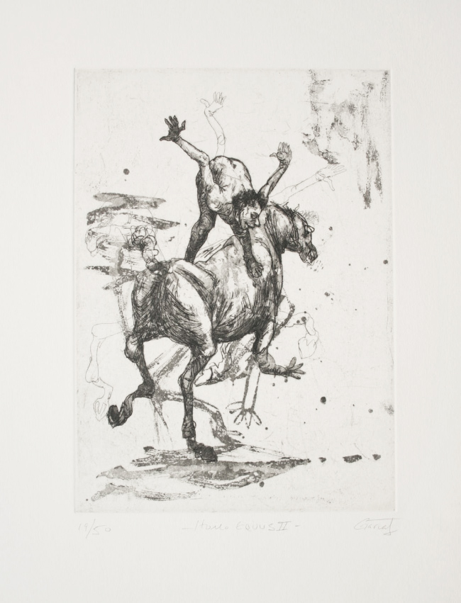 Homo Equus II