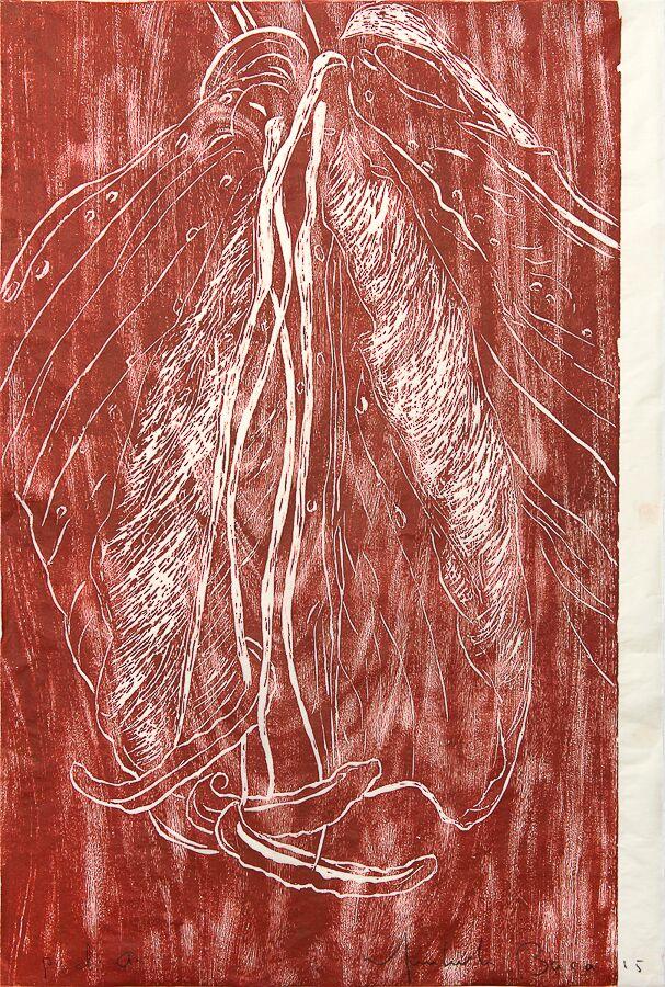 Lili roja