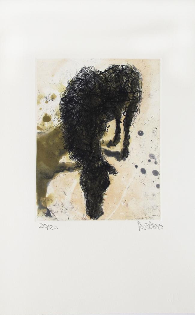 ST (Caballo viejo) 20/20 - Alberto Castro Leñero