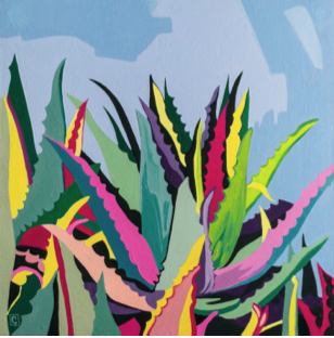 Colored maguey