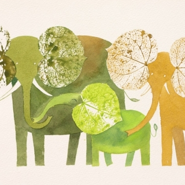 Elefantes (familia).