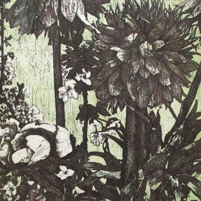 Selva Domestica 23/35
