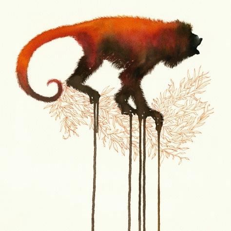 Mono rojo
