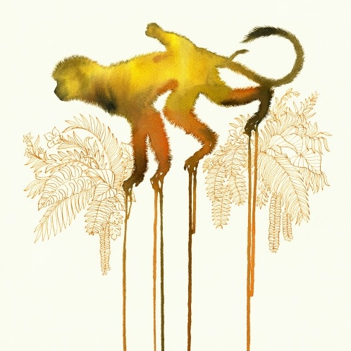 Monos amarillos