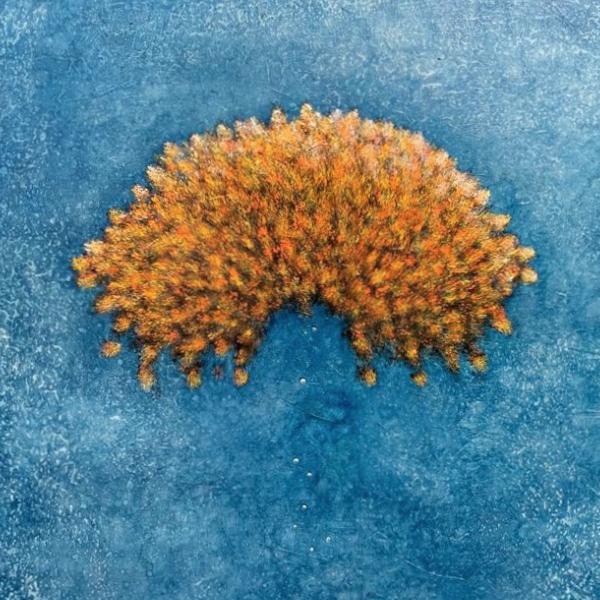 Aquaria III
