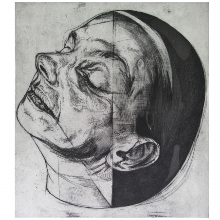 Head 5/36
