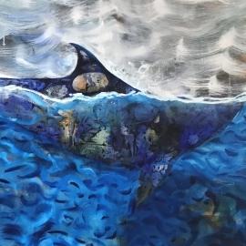 A casa tiburón