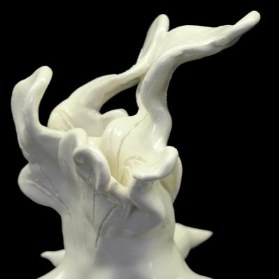 Corylus Algeae