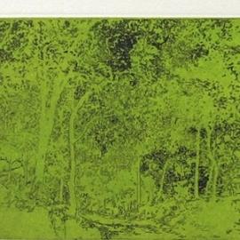 GABRIEL CARRILLO - Variaciones de un paisaje I
