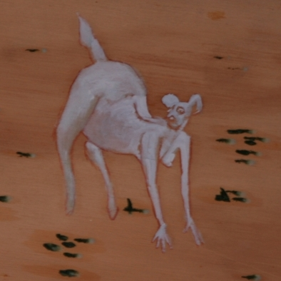 Canguro en campo árido