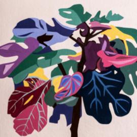 Fig tree study