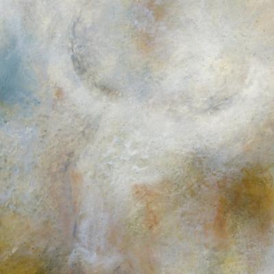 Toro nebulosa